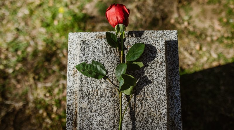 Rose auf Grabstein
